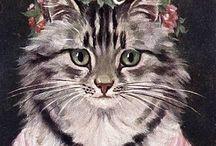 Les chats et les chattes / Aimable felins