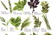 More Herbs Less Salt Day