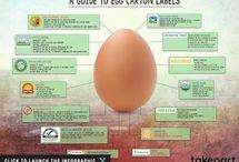Food Ethics