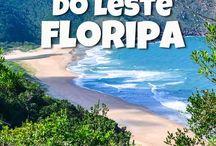 next trip floripa