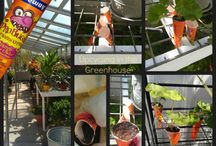 Greenhouse Project & Ideas / by Stacy Griffith
