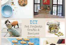 DIY DOG PROJECTS