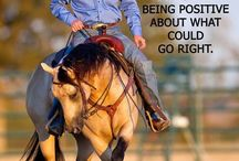 Via Holistic HorseLife