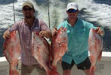 SYL Charters: Offering Best Charter Fishing Trips in Biloxi