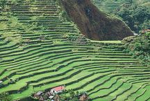 Philippines / My homecountry
