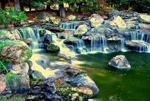 Gilroy Gardens - Flowers, Topiary, Kids' Paradise