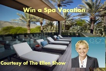 Sweepstakes/ Giveaways / by Miraval Resort & Spa