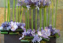 rendezvényes virágok
