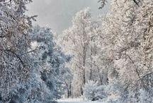 winter / by Kentucky Chick