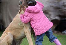 Why I love animals... / by Michele Kilcoyne