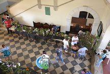 Exposição de Orquídeas e Bromélias na UFRRJ em Seropédica