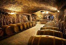 Visita bodegas de La Rioja / Encuentra las mejores bodegas de La Rioja con la mejor relación calidad-precio. Descubre la variedad que ofrecen desde las más modernas a las que tienen un estilo más tradicional.