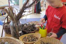 Natural learning / Natural materials, trays, nature tables, nature journaling.