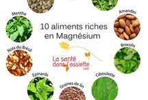 de alimentation riche