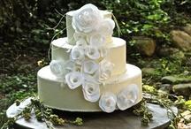 Bridalwave Wedding Decorations / by Bridalwave