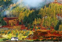 Scotland / All things to do with Scotland and its wildlife and landscape