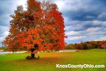 Beams Lake in Mount Vernon Ohio