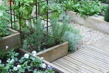 Inspirasjoner til hagen