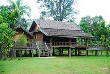 Tradisional House