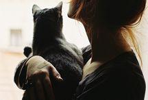 cattz