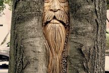 face trees