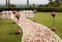 Sweet Ceremonies