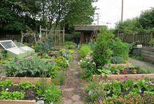 Gardening Layouts