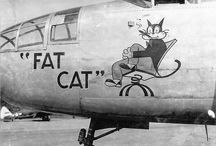 WWII Airplane Nose Art