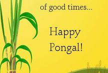 HappyPongal2017