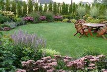 #Ogród