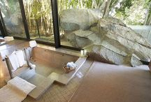Spa / Design precedents and features