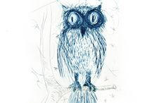Owls / Pictures & Design