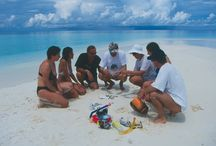 CROCIERA SCIENTIFICA MALDIVE 2015