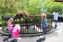 CG Water / Water features in children's gardens in Botanic gardens