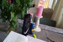 Study / flowers