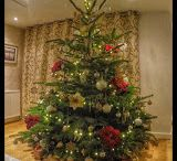 2015 Marldon Decorated Christmas Trees / Beautifully decorated Marldon Christmas Trees kindly shared by our wonderful Customers #inspiration
