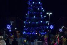 Vánoční strom splněných přání 2015 / Tradiční slavnostní událost pro celou rodinu.