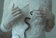 Serpent Series