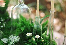 Forest Weddings / Weddings