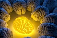 Curcuma :tres bon pr le cerveau.