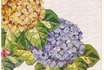 ortencias Arranjos Florais