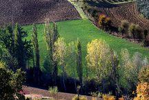 Autunno in Toscana / La più bella regione, #Toscana, belli i colori