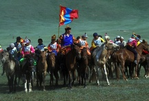 Mongolia / by ElderTreks