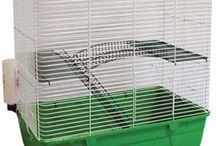 Ratty Love / by Jenny Sutherland