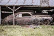 Barn finds / by Cassandra Fields