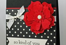 So kind of you