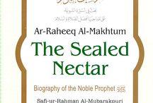 Life of Prophet Muhammad (pbuh) / Prophet