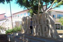 Ayia Napa / Ciprus - Ayia Napa üdülés, szórakozás, beach