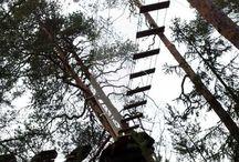 Tyytikki: Yläradat − vihreä / Top course − green / Seikkailupuisto Huipun yläradat sijaitsevat kallion laella. Nämä kuvat esittelevät Huipun helpoimman vihreän yläradan, joka sai nimekseen Tyytikki. Tyytikki oli muinaissuomalaisille oravien kantaäiti ja suojelija.  Rata kulkee kuuden metrin korkeudessa kallion jyrkänteen viertä ja päättyy liukuun. Kutkuttavia näkymiä!  Tree top adventure on the top green course.
