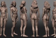Female Bodies